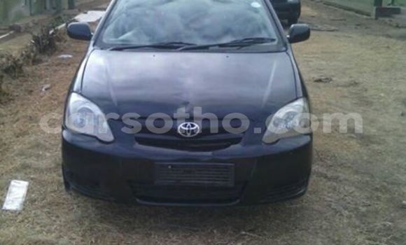 Buy Used Toyota Runx Black Car in Maseru in Maseru
