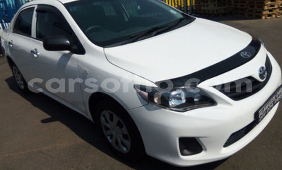 Buy Used Toyota Corolla White Car in Peka in Leribe