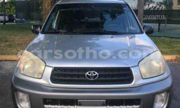 Buy Used Toyota RAV4 Other Car in Maseru in Maseru