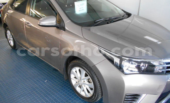 Buy Used Toyota Corolla Other Car in Qacha's Nek in Quthing