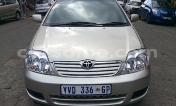 Buy Used Toyota Corolla Other Car in Mokhotlong in Berea