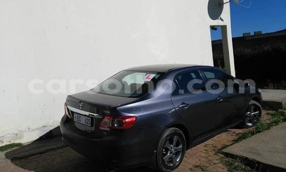 Buy Imported Toyota Corolla Other Car in Maseru in Maseru