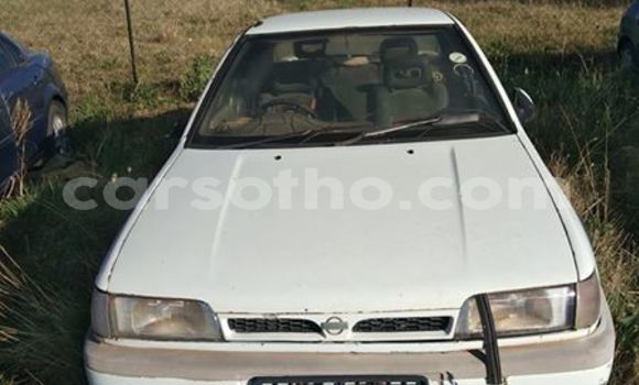 Buy Imported Nissan Sentra White Car in Maseru in Maseru