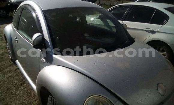 Buy Imported Volkswagen Beetle Silver Car in Maseru in Maseru