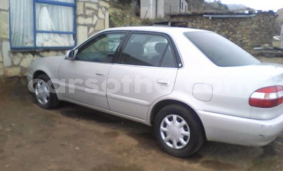 Buy Import Toyota Corolla Silver Car in Maseru in Maseru