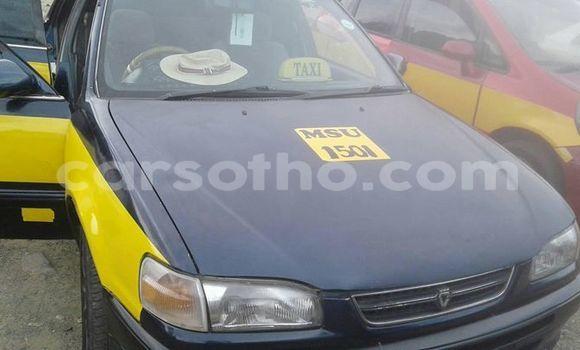 Buy Used Toyota Corolla Other Car in Maseru in Maseru