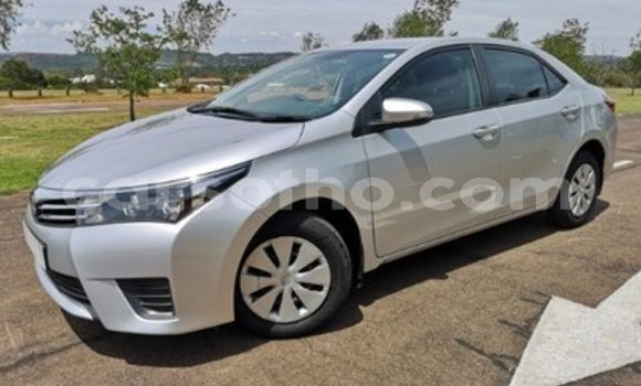 Buy Used Toyota Corolla Silver Car in Hlotse in Leribe