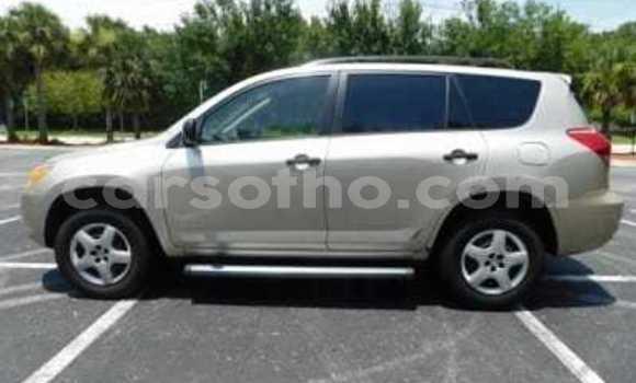 Buy New Toyota RAV 4 Silver Car in Butha–Buthe in Thaba-Tseka