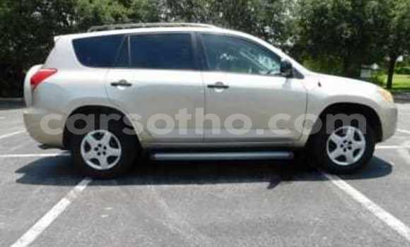 Buy Used Toyota RAV 4 Silver Car in Hlotse in Leribe