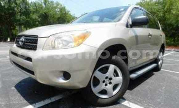 Buy Import Toyota RAV 4 Silver Car in Maseru in Maseru
