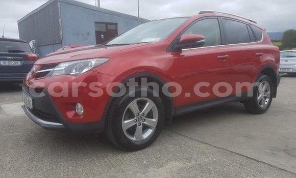 Buy Used Toyota RAV 4 Other Car in Hlotse in Leribe