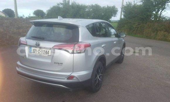 Buy Used Toyota RAV 4 Brown Car in Maputsoe in Leribe