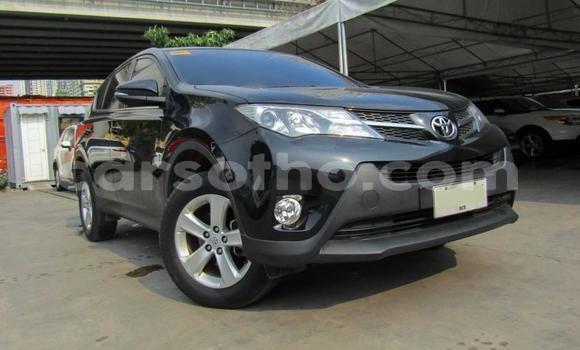 Buy Used Toyota RAV 4 Other Car in Maputsoe in Leribe