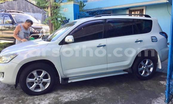 Buy Used Toyota RAV4 White Car in Mohale's Hoek in Mohale's Hoek