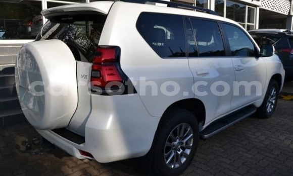 Buy New Toyota Prado White Car in Butha–Buthe in Thaba-Tseka