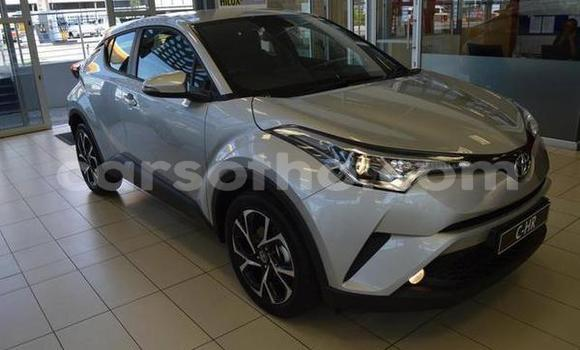 Buy Used Toyota C-HR Silver Car in Maseru in Maseru