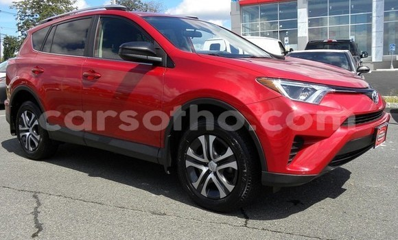 Buy Import Toyota RAV4 Red Car in Thaba–Tseka in Mafeteng