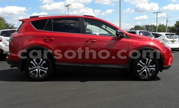 Buy Imported Toyota RAV 4 Red Car in Peka in Leribe